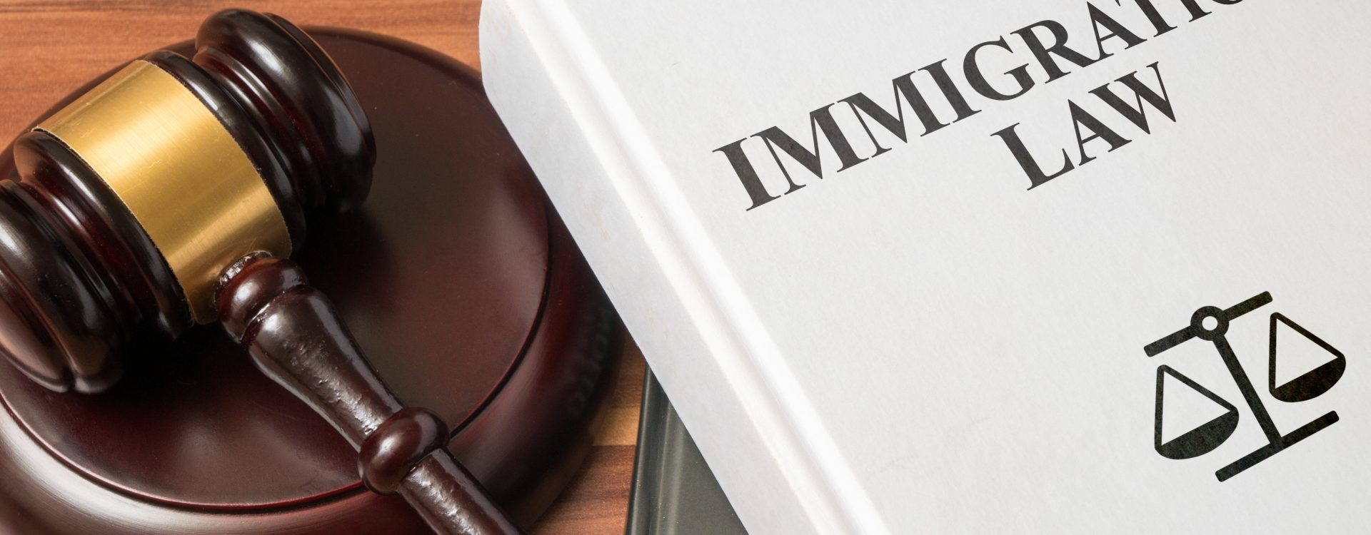 NEW IMMIGRATION LAW PROPOSED BY SENATE; AWAITING RESPONSE FROM THE HOUSE OF REPRESENTATIVES